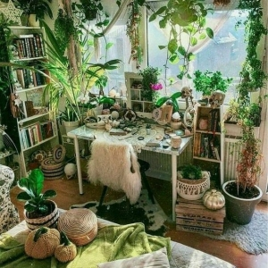 4 // Boho // Plants // Indoor Jungle