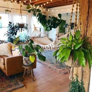 7 // Boho // Plants // Indoor Jungle