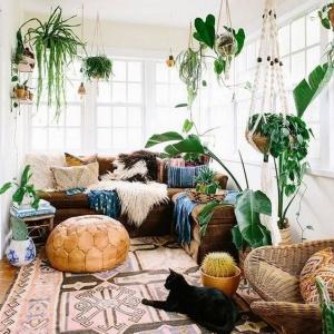 9 // Boho // Plants // Indoor Jungle