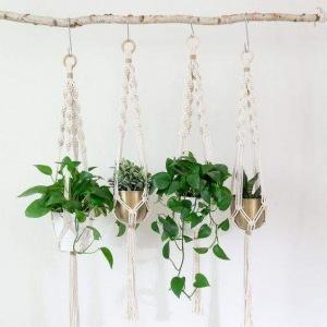 5 // Boho // Plants // Modest Plant Mama Vibes