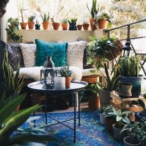 6 // Boho // Plants // Outdoor Spaces