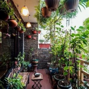 8 // Boho // Plants // Outdoor Spaces