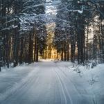 11 Activities For Winter Fun